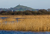 Avalon Marshes (*Hairbear) Tags: reeds glastonbury rural uk somerset water avalon tor spring hills marshes isleofavalon marsh