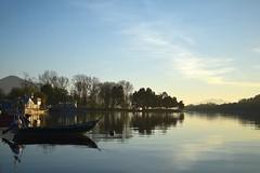 Relax (Llópez) Tags: barco bote vegetación valença minho miño españa portugal pontevedra viaje paisaje calidez contraluz