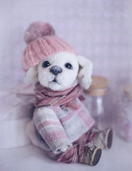 Toy Teddy Dog stay on a blue background (♥Oxygen♥) Tags: background teddy dog toy holding homemade vintage birthday bow bunny card cardboard celebration doll decoration dreamy event gift grungy hand handmade love magic package present retro romantic white wooden arms brown kid child children reddy knitted cap shabbychic clothes labrador