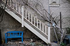 blue bench (freiraum7) Tags: fuji xt20 i fujinon xf 18mm f2