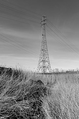 . (Number Johnny 5) Tags: countryside tamron d750 nikon angles east lines anglia cables powerline imanoot rural pylon norfolk 2470mm