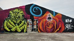 Solid & Plur / Dok Noord - 29 mar 2017 (Ferdinand 'Ferre' Feys) Tags: gent ghent gand belgium belgique belgië streetart artdelarue graffitiart graffiti graff urbanart urbanarte arteurbano solid plur
