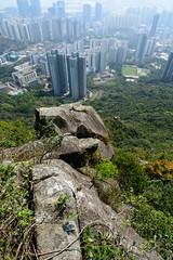 DSC_8506 (sch0705) Tags: hk hiking kowloonpeak standingeagleridge