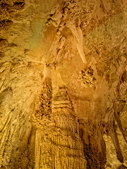The Lion's Tail formation in the Big Room, Carlsbad Caverns National Park, New Mexico (Cwep) Tags: rockformations newmexico artificiallighting landscape cave stalactite stalagmite speleothem 2014 location usa carlsbadcavernsnationalpark light