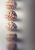 MM004 - Nasturtium seed (blende74.de) Tags: makro nasturtium studio macro samen seed kapuzinerkresse macromondays memberschoiceseeds tropaeolum 100mm28
