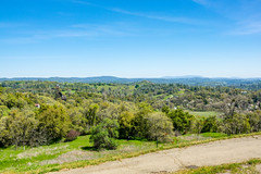 Looking east towards the mountains (randyherring) Tags: ca california foothills sierranevadafoothills nature mountains view outdoor trees recreational afternoon jackson unitedstates us