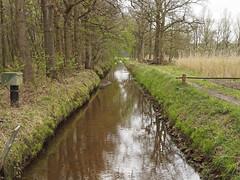 de Kampina (ericderedelijkheid) Tags: kampina boxtel oisterwijk netherlands nederland noordbrabant nature april