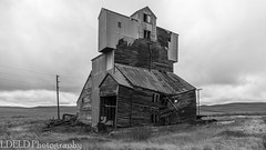NT3.0033-CW1605618_38669-2 (LDELD) Tags: palouse pullman washington unitedstates us old abandoned agricultural building grainery fallingdown granary