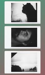 instax triptych (lister96) Tags: instantfilm yvrartist yvr monochromeinstax canada lister96 film analog instant instantfim fujiinstax fujifilminstax dianaf lomography lomodiana