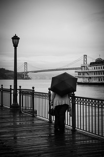 lovely rainy view
