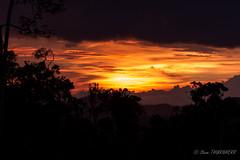 Coucher de soleil / Sunset (steve THURNHERR) Tags: coucher de soleil sunset papouasie nouvelle guinée papua new guinea jungle forest forêt landscape paysage sky
