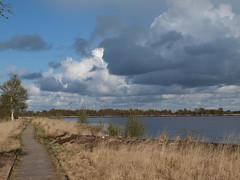 Ewiges Meer (Reinhard Höfkes) Tags: ewigesmeer eversmeer hochmoor ostfriesland niedersachsen moor see hochmoorsee natur wasser bäume wolken himmel