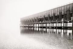 hacia la niebla (©Kofe (Paco Fernández)) Tags: cargaderomineral almeria pacofernandez niebla fog agua tranquilidad calma madera