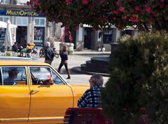 city (joaommesquita) Tags: city car dog tree man life sunny day