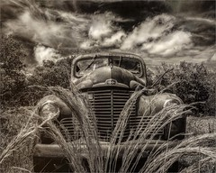 The Old International Truck in a Field (A Anderson Photography, over 1.7 million views) Tags: wow canon international truck mono