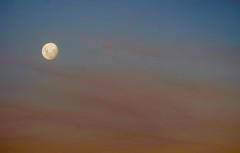 DSCF7863 (nason.sarah) Tags: moon moonrise moonset sunset sky nz newzealand maudisland