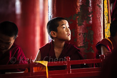 Mongolia-130803-622 (Kelly Cheng) Tags: amarbayasgalantmonastery asia buddhism centralasia mongolia boy ceremony child color colorful colour colourful culture heritage horizontal indoor monk people persons pray prayer red religion tourism travel traveldestinations vivid