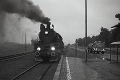 Ol49-69 (pedro4d) Tags: ol49 ol4969 turkol krobia pkp kolej pociąg parowóz dampflok steam engin fuji fujica gw690 ilford delta 400 mediumformat blackandwhite czarnobiałe monochrome film analog polska poland