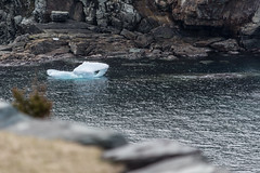 Bergie Bit (Clif Budden) Tags: 2017 april canada cold ice iceberg nl nature newfoundland outdoors saturday
