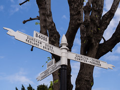 It's a sign (wi-fli) Tags: bristol england unitedkingdom sign signpost fingersign old road westburyontrym trym tree sky fingers pointing point pointer b4055 english