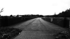 Bradley Viaduct  (Huddersfield   Newtown - Mirfield  old railway) (dave_attrill) Tags: huddersfield newtown hillhouse mirfield lmsr london midland scottish railway disused line goods only branch trackbed west yorkshire riding cycle path foothpath ncn connection sheffieldtobradford bradley viaduct april 2017 blackandwhite monochrome