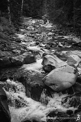 "Wednesday's JBP Photo of the Day! ""River on the Wonderland Trail - Possibly Boulder Creek (Black & White)"" (Joe Boyle Photography) Tags: mount mt mountain rainier national park geographic landscape peace serenity majestic majesty beautiful beauty volcano wonderland trail indian bar campsite campground creek river boulder jbpphotooftheday"