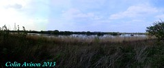 PANORAMA VIEW (Colin Avison) Tags: water attenborough naturereserve quarry beeston nottinghamshire