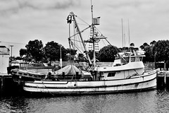 Purse Seiner (Lenny Lloyd da Silva) Tags: boats harbor fishing fisherman pacific ships working pacificocean socal commercial fishingboats oceanview sanpedro workingboats seiners purseseiners commercialfishingboats coastlineboats