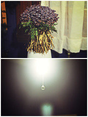 143/365 (little bird ) Tags: flowers light 50mm bedroom room prism halo lilac stuff lavander 365