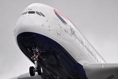 [12:43] 'BA903U' (BA0903) FRA-LHR: G-XLEA second revenue flight. (A380spotter) Tags: london heathrow ab 2nd landing finals landinggear airbus a380 10th ba arrival approach americanairlines britishairways 800 3rd aa lhr aal ber baw airberlin undercarriage iag egll nosegear 27r runway27r shortfinals fralhr serviceentry ba903u gxlea ba0903 internationalconsolidatedairlinesgroupsa msn0095 15°increaseinwingtwist firstwv006variant 573t1260000lbmtow 4tonne8800lbincreasetotakeoffweight 800igw secondcommercialservice ab5015 aa6579 thirdeuropeana380operator secondrevenueflight tentha380operator