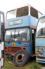 2013-08-12 BEP 975V Bristol VRT-ECW of Griersons, Fishburn (John Carter 1962) Tags: bus buses southwales independent northeastindependent