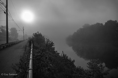 Morning Fog / Brume matinale (guysamsonphoto) Tags: morning blackandwhite bw fog noiretblanc rivière reflexions brume matin victoriaville rivièreduquébec rivièrenicolet guysamson sonynex6 sony1650oss victp