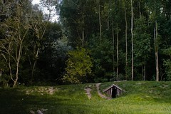 The Hobbit isn't home...(i have checked) (J@N187) Tags: trees tree dutch wonderful landscape fun bomen nederland boom bos biesbosch landschap