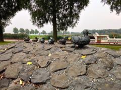 Kunst Tollebeek (FaceMePLS) Tags: art bronze kunst nederland thenetherlands streetphotography ducks flevoland nop kunstwerk brons straatfotografie facemepls iphone5 tollebeek gemeentenoordoostpolder