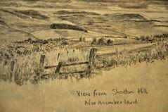 Northumberland landscape (amanda.parker377) Tags: england walking landscape northumberland pencildrawing shottonhill