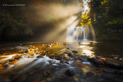 Butte Creek Shines (Dylan Toh) Tags: longexposure landscape photography waterfall silverton pacificnorthwest dee everlook scottsmills buttecreekfalls usaoregon