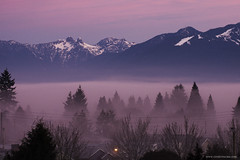 Fog in the morning (Zorro1968) Tags: trees cloud mountains fog vancouver sunrise landscape