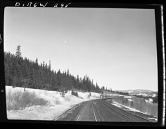 D+RGW295 (barrigerlibrary) Tags: railroad library denverriogrande drgw barriger