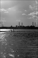 Am Rhein (Johannes Pe) Tags: leica ii tele 90 m9 elmarit