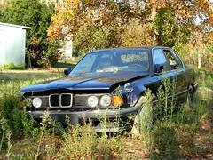 BMW 730i E32 (Alessio3373) Tags: abandoned bmw scrap abandonment abandonedcar 730 e32 abandonedcars scrappedcar 730i scrappedcars bmwe32 bmw730i bmw730ie32 730ie32