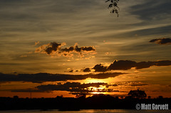Zambezi Sunset 5 (Matt Gorvett Photography) Tags: sunset orange sun yellow clouds river nikon dslr zambia zambezi 18105mm d5100 nikond5100
