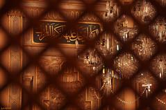 Bezmiâlem Valide Sultan Camii (gLySuNfLoWeR) Tags: muslim islam istanbul mosque lamb ottoman cami dolmabahçe osmanlı mihrap