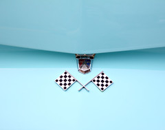 Checkered Flags (Samantha Evans of Samantha Evans Photography) Tags: red black ford car canon ga silver georgia gold classiccar automobile paint turquoise painted flag flags crest chrome badge lions plains classiccars automobiles carshow carbadge checkeredflag checkeredflags plainsga tamron1750 canon60d oldandbeautiful fordcrest