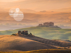 Tuscany Countryside with Hills and Villas (CreativeNature.nl) Tags: morning italy house building tree nature beauty field fog architecture farmhouse rural sunrise garden landscape dawn countryside spring amazing haze italian scenery italia mood farm country hill foggy meadow olive peaceful tuscany mysterious cypress homestead hay pienza agriculture residence picturesque idyllic dreamland haybale scenics tuscan agriturismo orcia quiete quirico sanquirico