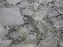 Ice (niafollis) Tags: above city winter snow berlin ice broken water river germany frozen melting close floating slush down crack sheet layers float fragile cracked fragility