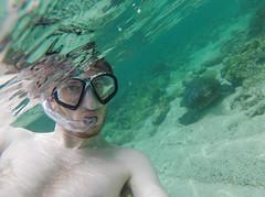 Underwater selfie with a sea turtle in the Galapagos (GoPro) (MelC.) Tags: ocean travel sea beach southamerica water swim photography ecuador paradise underwater pacific galapagos sancristobal seaturtle selfie gopro