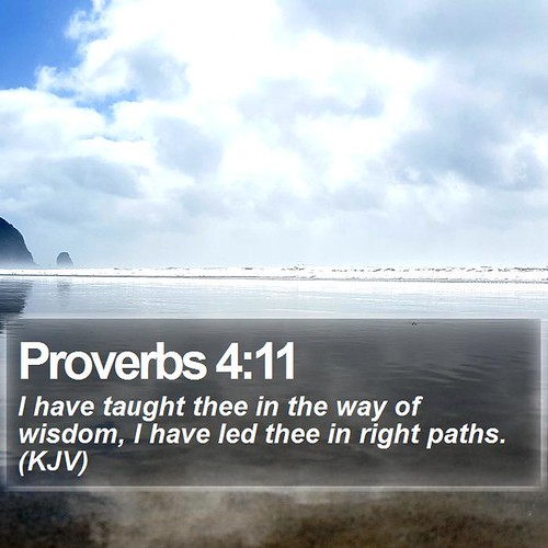 Daily Bible Verse - Proverbs 4:11 - a photo on Flickriver
