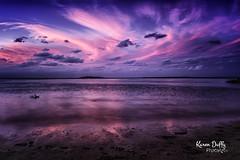 WP4 (Karen Duffy PhotoArt) Tags: sunset wellingtonpoint purple golden goldenhour bird sea ocean water fishing sailing sand beach holiday