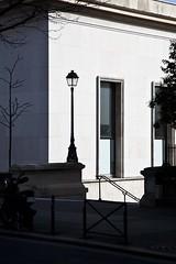 L'interprétation des réverbères (Gerard Hermand) Tags: 1703137001 gerardhermand france paris canon eos5dmarkii formatportrait palaisdetokyo musée museum extérieur outside réverbère streetlight rampe handrail