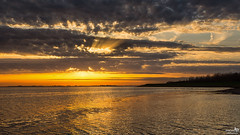 Sun Rays at Sunset (BraCom (Bram)) Tags: bracom cloud wolk reflection spiegeling sunset zonsondergang glow gloed trees bomen lake meer evening avond herkingen grevelingenmeer goereeoverflakkee zuidholland nederland southholland netherlands holland canoneos5dmkiii widescreen canon 169 canonef24105mm bramvanbroekhoven nl